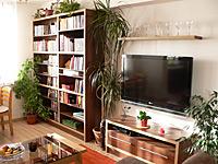 Knihovna a stolek pod televizi